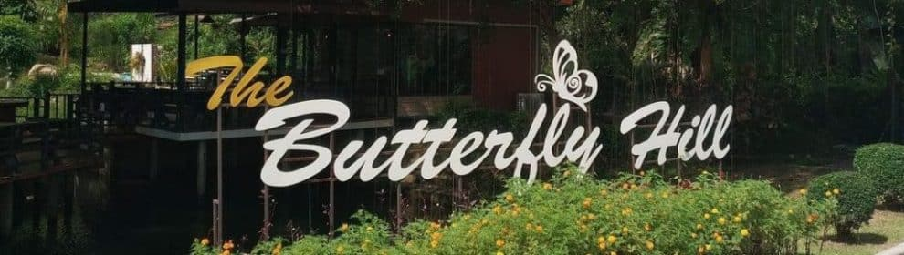 koh samui butterfly garden featured